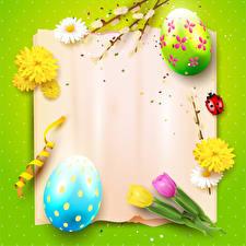 Фото Пасха Маргаритка Тюльпан Божьи коровки Цветной фон Шаблон поздравительной открытки Дизайн Яиц