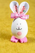 Фотография Пасха Оригинальные Кролик Боке Яйцо Бантики