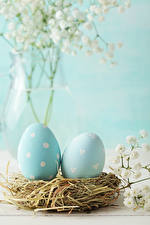 Фото Пасха Гнезда Яйцо 2 Голубая Соломе Пища