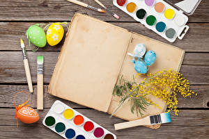 Фотография Пасха Акация серебристая Доски Яйцо Кисть Шаблон поздравительной открытки Краски