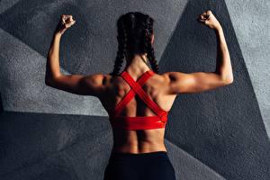 Обои для рабочего стола Фитнес Вид сзади Спины Руки Коса спортивные Девушки