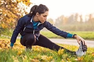 Обои Фитнес Трава Лист Растягивается Физическое упражнение спортивный Девушки