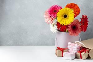 Фотографии Гербера Букет Вазе Бумажный пакет Подарок цветок