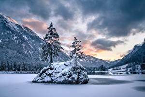 Обои для рабочего стола Германия Зимние Озеро Гора Бавария Дерево Альп Снега Berchtesgaden National Park, Hintersee Lake Природа