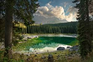 Картинки Озеро Италия Лес Пейзаж Дерево Dolomites, Karersee