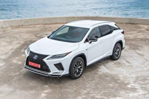 Фото Лексус Белый 2019-20 RX 450h F SPORT Worldwide Автомобили