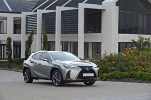 Обои Lexus Серые Металлик 2019 UX 200 F SPORT машина