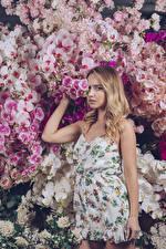 Картинка Орхидеи Блондинка Платья Смотрят Девушки