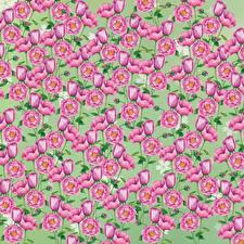 Картинки Рисованные Текстура цветок