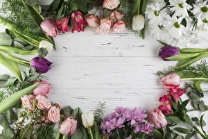 Картинка Роза Тюльпан Хризантемы Альстрёмерия Доски Шаблон поздравительной открытки