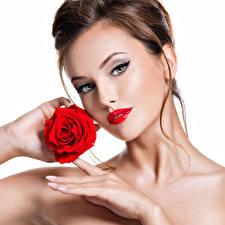 Фото Роза Белый фон Шатенки Лица Красные губы Руки Взгляд Модель Красивый молодая женщина
