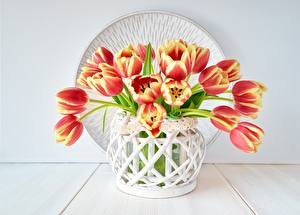 Обои Тюльпан Букет Вазе цветок