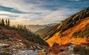 Обои для рабочего стола Америка Леса Гора Пейзаж Небо Вашингтон Дерева Облачно North Cascades National Park, Mount Baker Природа