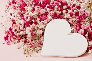 Картинка День святого Валентина Серце Шаблон поздравительной открытки Цветы
