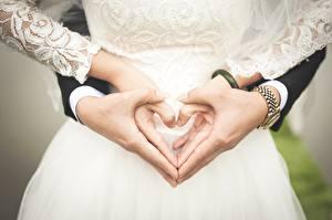 Фотографии Наручные часы Свадьба Сердечко Руки