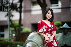 Картинки Азиатки Боке Брюнетка Платье Улыбка молодая женщина