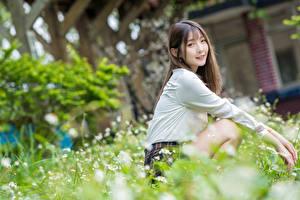 Фотографии Азиаты Боке Сидящие Улыбка Взгляд молодые женщины