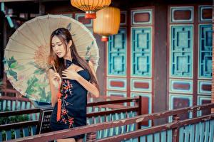 Картинка Азиатки Платья Рука Зонтом Волосы молодые женщины