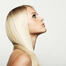 Обои Блондинки Фотомодель Волос Красивая Сером фоне