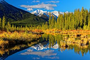 Фотографии Канада Лес Гора Озеро Осенние Пейзаж Банф Отражении Alberta