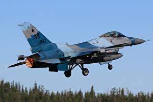 Фото Истребители Самолеты F-16 Fighting Falcon Взлетает Авиация