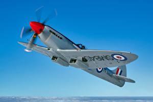 Фото Истребители Небо Самолеты Летящий Supermarine Spitfire FR XVIII Авиация
