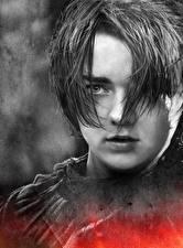 Фото Игра престолов (телесериал) Мэйси Уильямс Вблизи Лица Arya Stark Знаменитости Девушки
