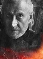 Обои для рабочего стола Игра престолов (телесериал) Мужчины Лицо Tayvin Lannister Фильмы