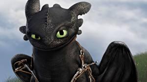 Фотография Как приручить дракона Драконы Вблизи Night Fury Мультики 3D_Графика