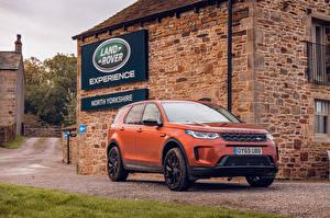 Фотография Range Rover CUV Оранжевая Металлик 2019-20 Discovery Sport D180 SE Автомобили