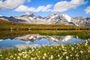 Фотография Гора Озеро Альп Отражении