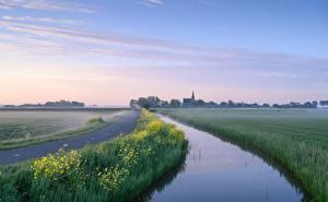 Картинка Голландия Утро Водный канал Тумане Woudse Polder Природа