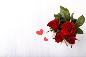 Фотографии Роза Букеты Сердца Сверху Цветы