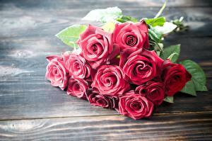 Фото Роза Букеты Красная Доски цветок