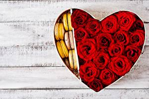 Фото Роза День всех влюблённых Сердечко Красная Доски Макарон Шаблон поздравительной открытки цветок
