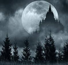 Фотографии Храм Ночные Ели Луны Силуэта Природа