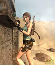 Обои Tomb Raider Tomb Raider Legend Лара Крофт компьютерная игра 3D_Графика Девушки