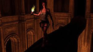 Картинка Tomb Raider Tomb Raider Legend Лара Крофт Факел компьютерная игра 3D_Графика Девушки