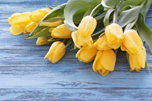 Картинки Тюльпаны Букет Доски Желтая цветок
