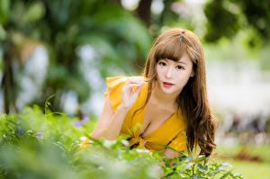 Фотография Азиатки Боке Платья Вырез на платье Смотрит Шатенки