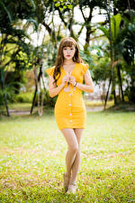 Фотографии Азиаты Платья Ноги Взгляд Девушки
