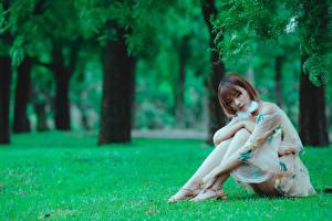 Фото Азиаты Трава Сидит Платья Ноги Девушки