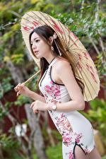 Фотография Азиатки Позирует Платья Зонтом девушка