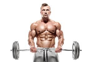 Фотографии Бодибилдинг Мужчина Штангой Тренируется Живота Рука Мускулы Белом фоне спортивные