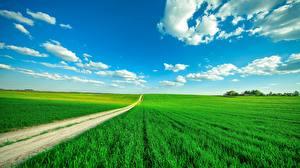 Фотографии Поля Дороги Небо Облака Природа