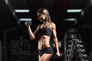 Фото Фитнес Спортзале Тренируется Гантелей Руки спортивные Девушки