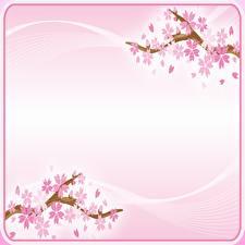Фотографии Цветущие деревья Сакура Розовых Шаблон поздравительной открытки Цветы