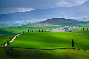 Обои для рабочего стола Италия Тоскана Гора Дороги Луга Холм Val d'Orcia Природа