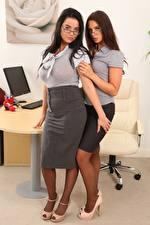 Фотографии Kay Only Saffron only Секретарши Двое Брюнетки Шатенки Очков молодая женщина
