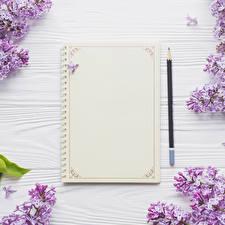 Картинки Сирень Шаблон поздравительной открытки Доски Лист бумаги Карандашей Блокнот цветок